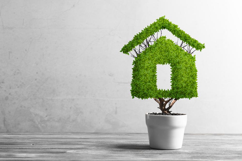 huis verduurzamen groen